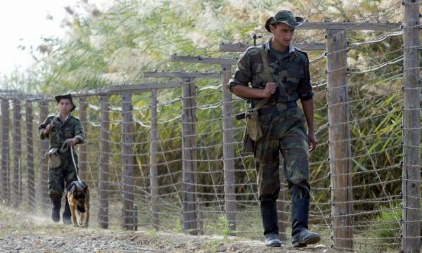 На границе Узбекистана задержаны 48 нарушителей и контрабанда на 370 миллионов сумов