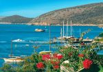 Гражданин Узбекистана найден повешенным на турецком курорте